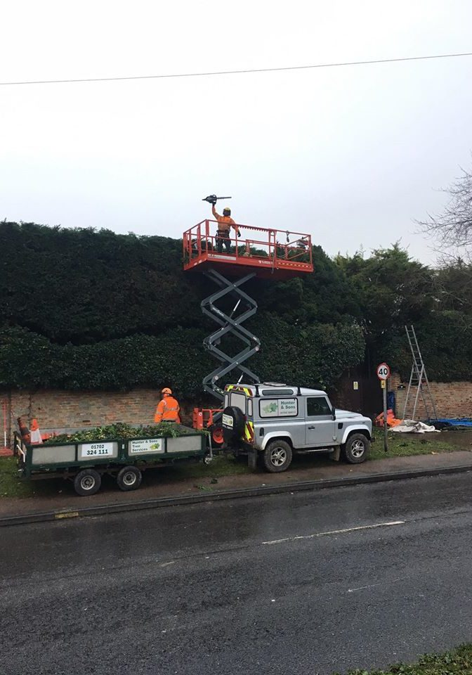 roadside hedge trimming